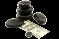 wellness money